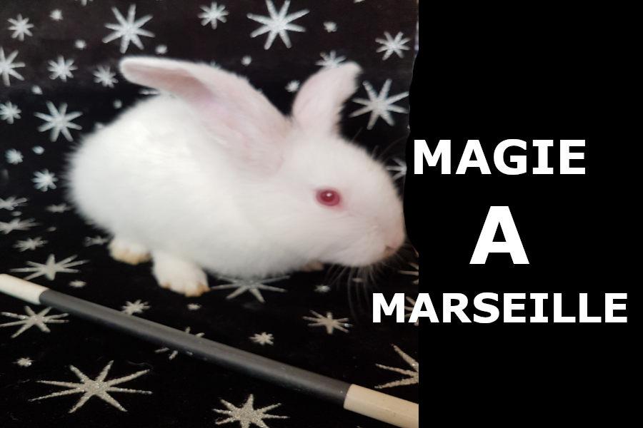 Quel magicien à Marseille choisir ?